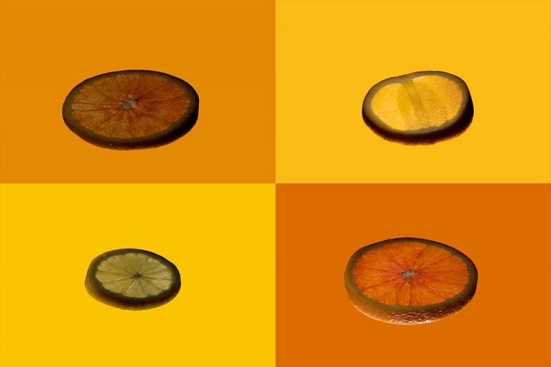 citrus fruit quartet 2