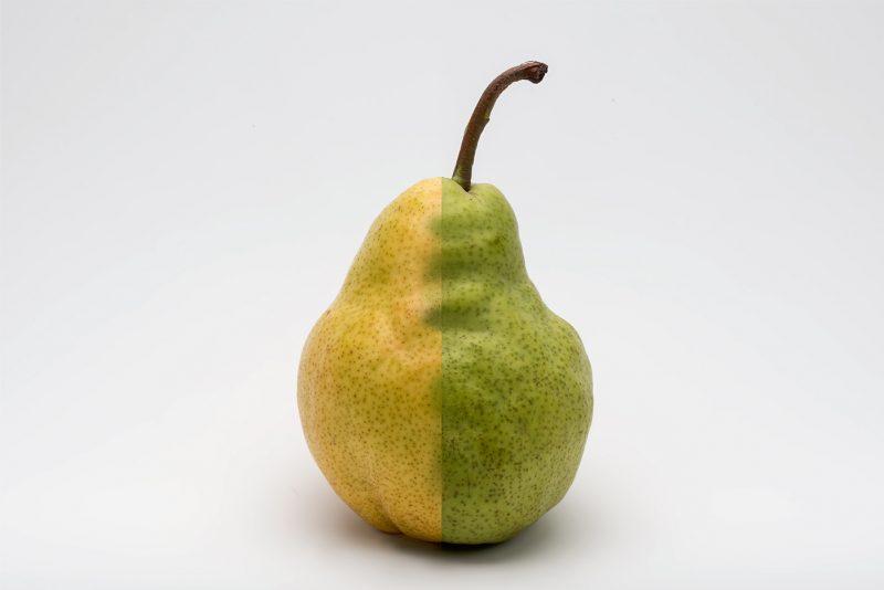 pear duo