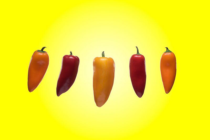 pepper family