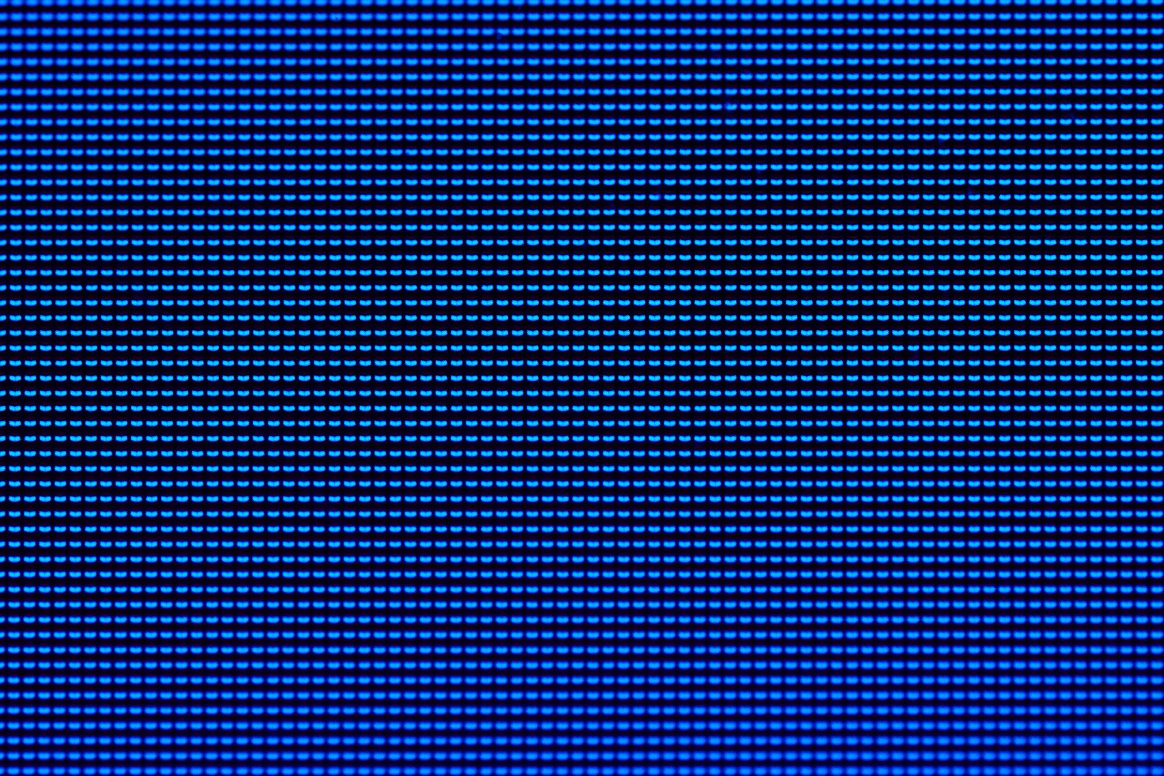 blue computer screen