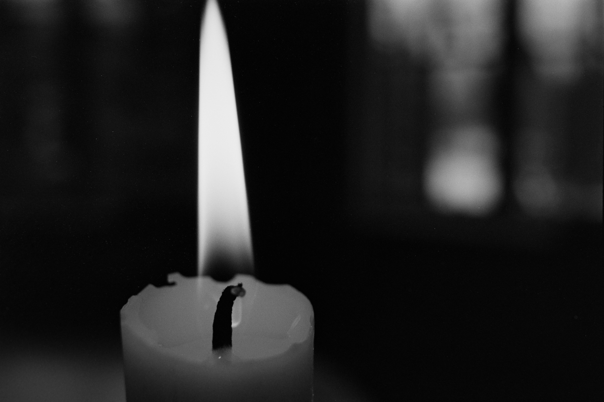 candle black and white ilford pan f film
