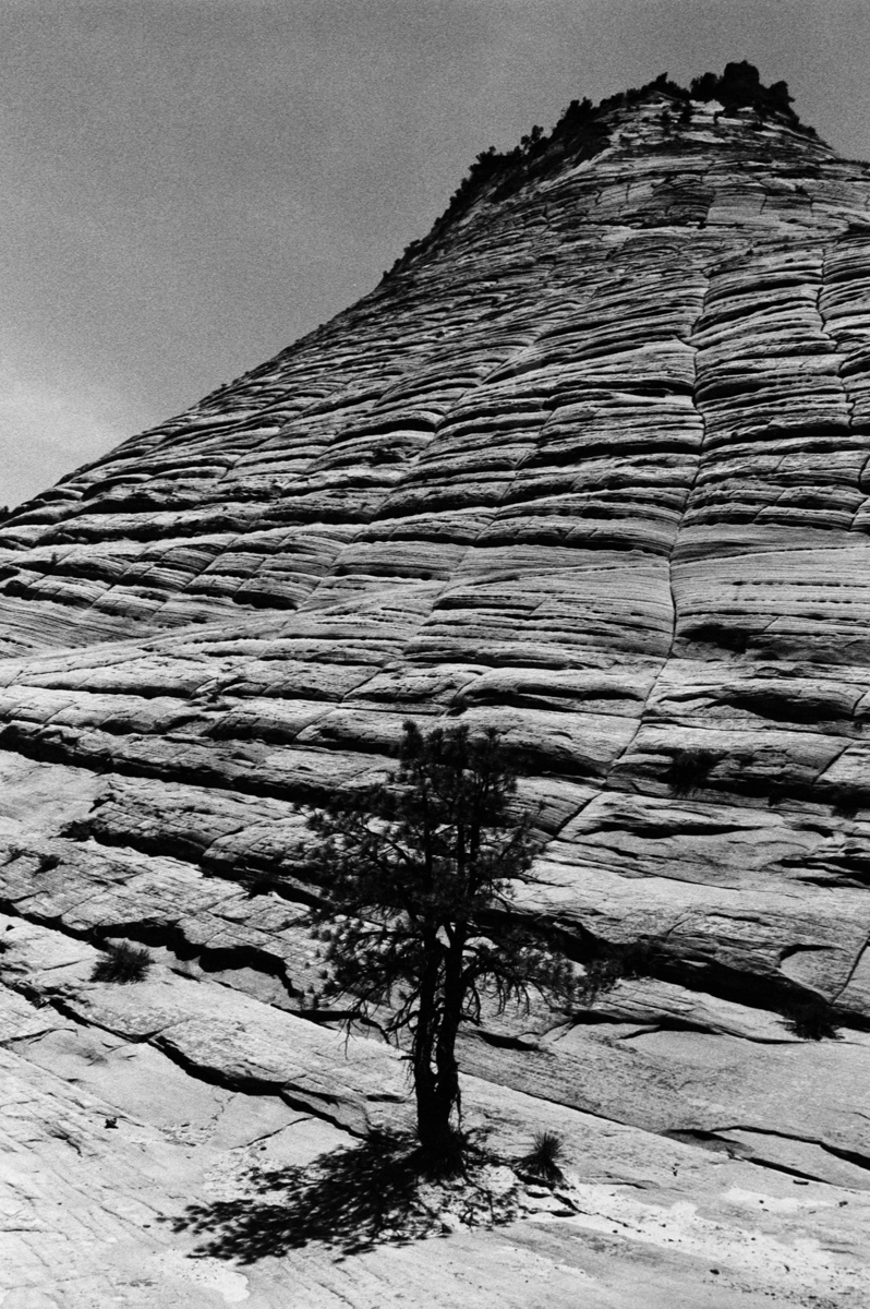 Zion National Park Ultrafine Xtreme 400 @ 1600 Nikon FE 28mm HC-110